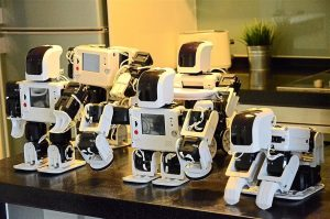 Sara Reina aplicaciones de la robótica